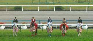女王杯の誘導馬 5.JPG