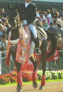 秋華賞の誘導馬 5.JPG