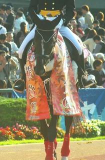 秋華賞の誘導馬 6.JPG