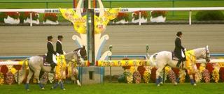 菊花賞の誘導馬 1.JPG