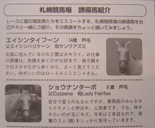 07rp01誘導馬1.jpg