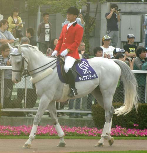20090906_shonan(9R).JPG