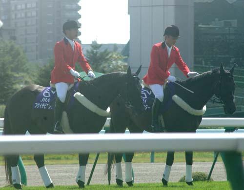 9 月 6 日の札幌競馬場3(1R).JPG