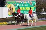20080309_sako_long-osumi.jpg