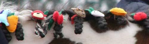 20100214_pony (4).JPG