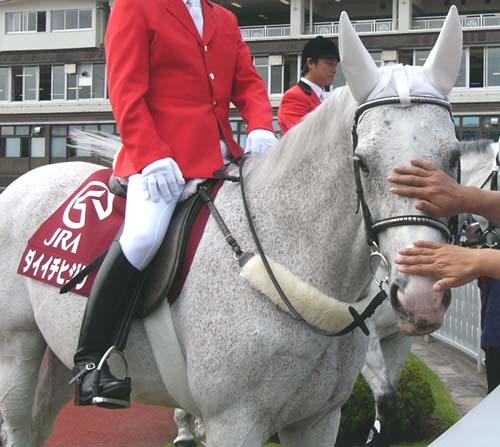 20080621-demu (5).JPG