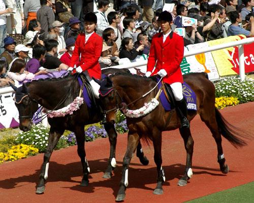 4 月 12 日の誘導馬1.JPG