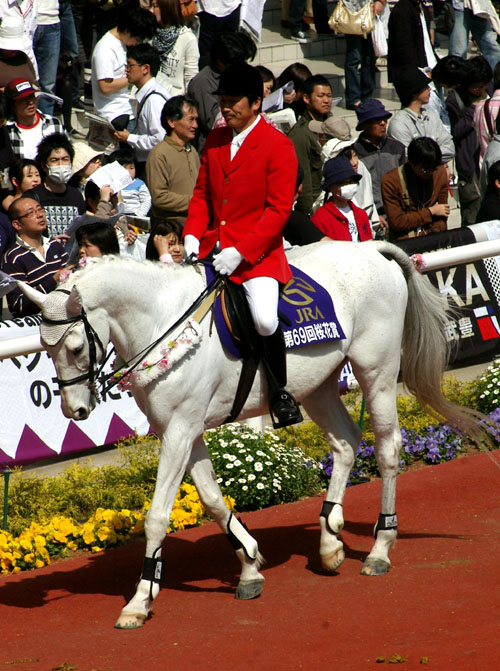 4 月 12 日の誘導馬2.JPG