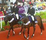 宝塚記念の誘導馬 2.jpg