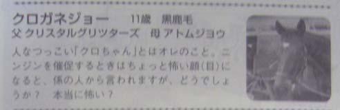 2009-kuro.jpg