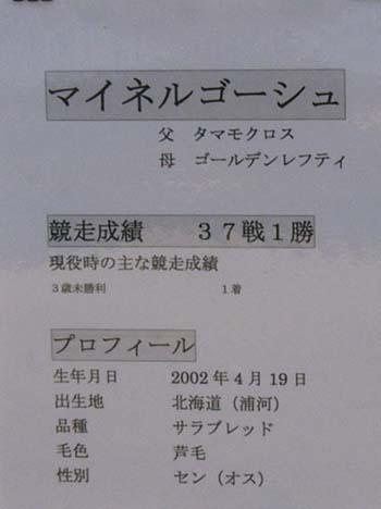 20100105_mg (1).JPG