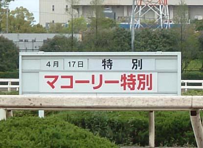 20080417マコーリー特別 (1).jpg