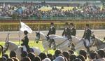 2008-jc (12).JPG