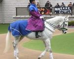 20080209 (1).jpg
