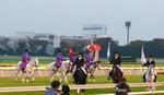 20081109 (10).JPG