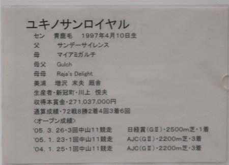 20081109_jyoba (5).JPG