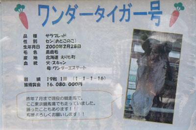 20100502_jyoba (8).JPG