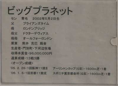 big(3).JPG