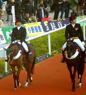 阪神 JFの誘導馬 2.JPG