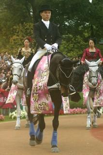 エリザベス女王杯の誘導馬1.JPG