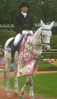 エリザベス女王杯の誘導馬5.JPG