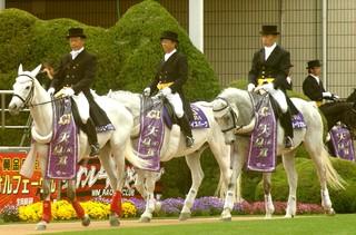 天皇賞誘導馬1.JPG