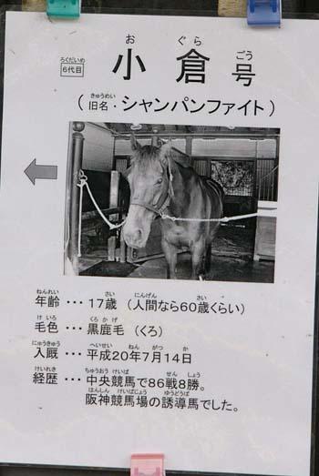 20081116_heian-kanban (4).JPG
