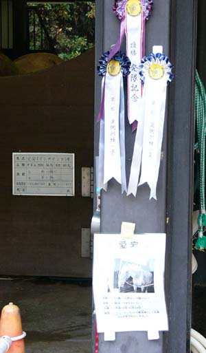 20081116_heian-kanban (6).JPG