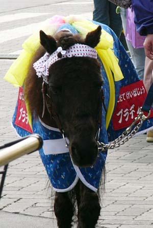 20080621-demu (3).JPG